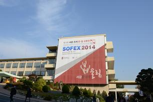 SOFEX banners were all over the Sogang campus